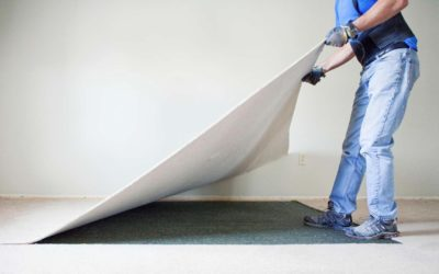 How Often Should Carpet be Replaced?