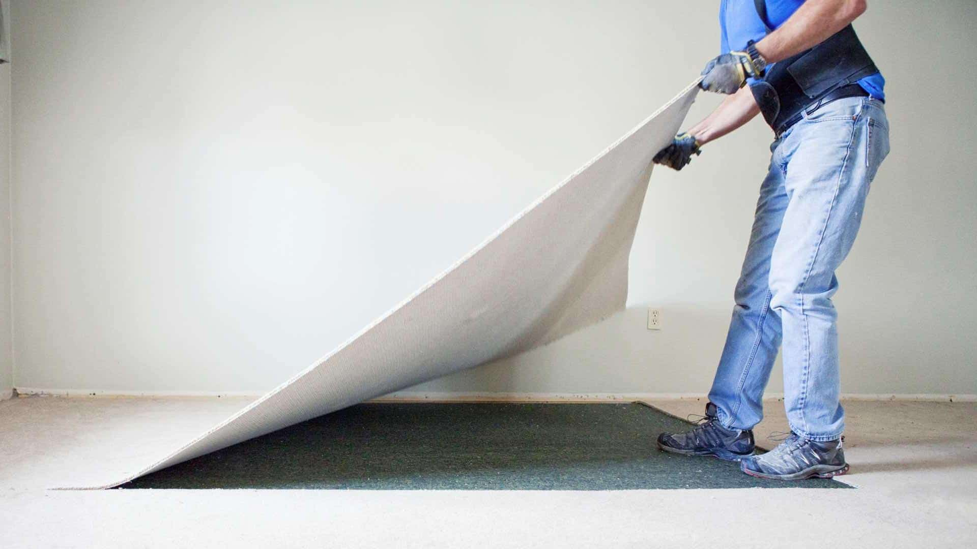 How Often Should Carpet be Replaced